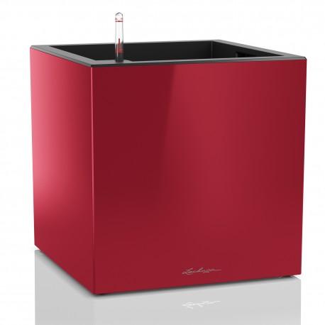 Lechuza Canto Premium kostka 40 červená lesk