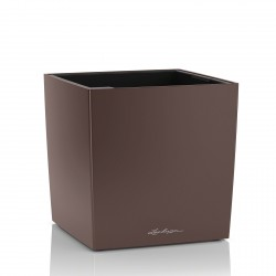 Lechuza Cube Premium 40 obal - hnědá metalická