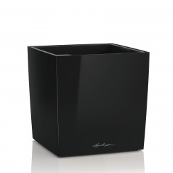 Lechuza Cube Premium 50 obal - černá lesk