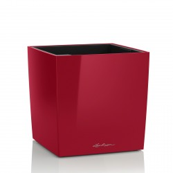 Lechuza Cube Premium 50 obal - červená lesk
