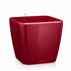 Lechuza Quadro 35 (kompletní set) červená lesk